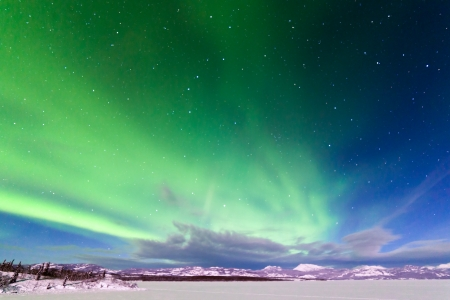 Spectacular display of intense Northern Lights or Aurora borealis or polar lights forming green swirls over frozen Lake Laberge  Yukon Territory  Canada winter landscape photo