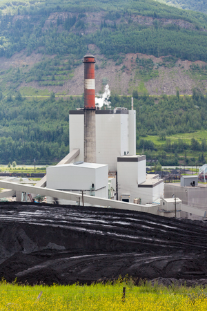 coal fired: Black coal mine pile at coal fired power station in green valley Stock Photo