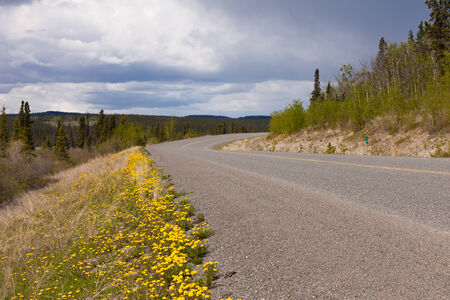 boreal: Empty rural country road highway in boreal forest taiga of Yukon Territory, Canada, in summer