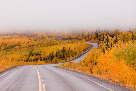 yukon: North Klondike Highway winding through autumn gold colored boreal forest taiga countryside with low cloud cover, Yukon Territory, Canada Stock Photo