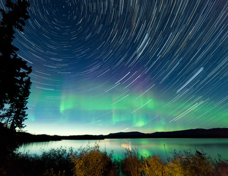 Astrophotography star trails on midsummer night sky with Aurora borealis or Northern Lights over shore willow bush at Lake Laberge, Yukon Territory, Canada