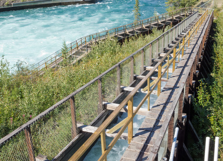whitehorse: Whitehorse Fish Ladder, worlds longest wooden Fishway, lets Salmon get past dam to their spawning grounds, Yukon Territory, Canada Stock Photo