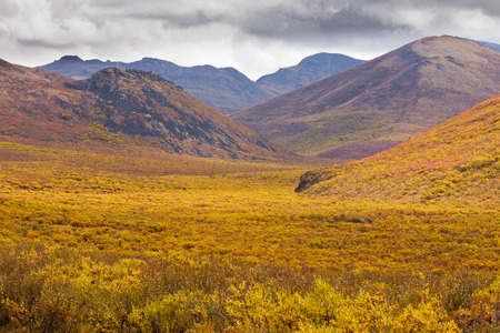 yukon: Aurumn fall colors in mountain tundra of Tombstone Territorial Park near Dempster Highway north of Dawson City, Yukon Territory, Canada Stock Photo