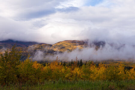 Autumn fall boreal forest taiga hills partly covered in clouds and fogs, Yukon Territory, Canada
