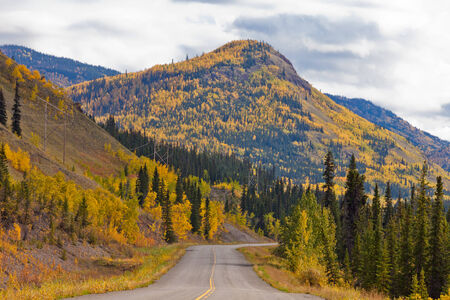 yukon: Empty road through autumn gold fall colored boreal forest taiga hills at North Klondike Highway, Yukon Territory, Canada