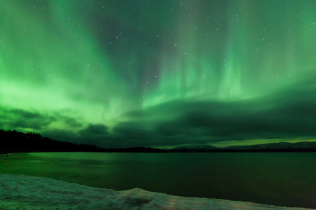 aurora polaris: Green sparkling show of Aurora borealis or Northern Lights on cloudy night sky winter scene of Lake Laberge, Yukon Territory, Canada