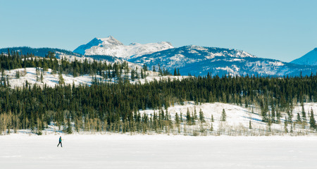 canada country: Active cross country skier using x-country ski on flat expanse of frozen Lake Laberge, Yukon Territory, Canada, exercising winter sports in beautiful winter landscape scenery