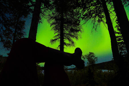 boreal: Person leg foot silhouette sitting in boreal forest taiga watching northern lights, Aurora borealis, on night sky above