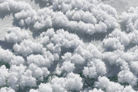 crystallized: Snow hoar-frost ice crystal clusters on snow surface nature background pattern texture