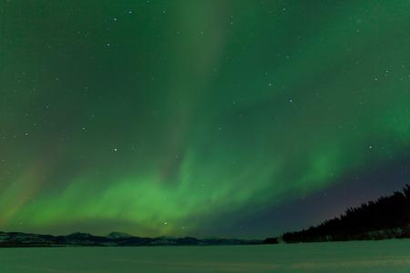 magnetosphere: Verde spettacolo scintillante di aurora boreale o aurora boreale sul cielo notturno oltre scena di paesaggio invernale del lago Laberge, Yukon Territory, Canada Archivio Fotografico