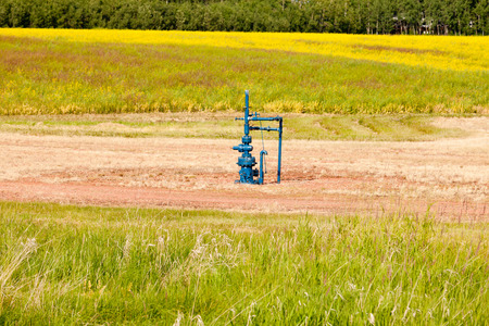 alberta: Natural gas wellhead in a meadow of green grassland field agricultural farmland in Alberta, Canada