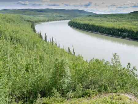 boreal: Liard River valley boreal forest taiga natural wilderness landscape of Northern British Columbia, Canada
