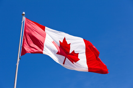canadian icon: Canadian flag flying in light breeze on top of metal pole against blue sky