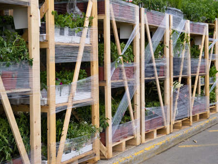 garden center: Delivery of pallets with gardening plant pots for sale in commercial garden center
