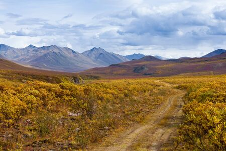 yukon territory: Autumn fall colors in mountain tundra of Tombstone Territorial Park near Dempster Highway north of Dawson City, Yukon Territory, Canada Stock Photo