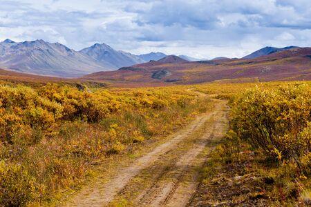 yukon: Autumn fall colors in mountain tundra of Tombstone Territorial Park near Dempster Highway north of Dawson City, Yukon Territory, Canada Stock Photo