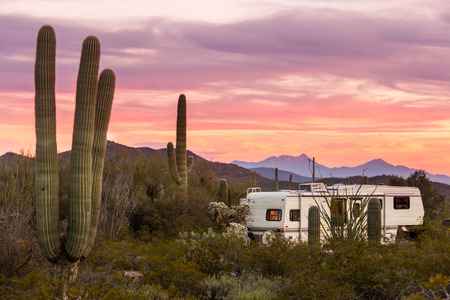 Fifth Wheeler RV parked on campsite in Sonoran Desert beside Saguaro Cacti
