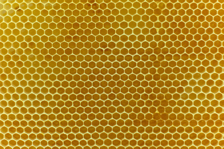 Real golden beewax honeycombs nature abstract pattern texture background