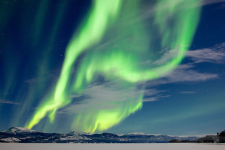 Spectacular Northern Lights or Aurora borealis or polar lights dancing over moon-lit winter landscape of frozen Lake Laberge, Yukon Territory, Canada