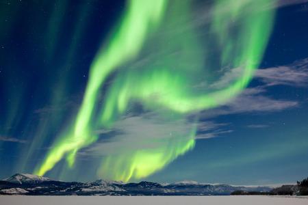 yukon territory: Spectacular Northern Lights or Aurora borealis or polar lights dancing over moon-lit winter landscape of frozen Lake Laberge, Yukon Territory, Canada