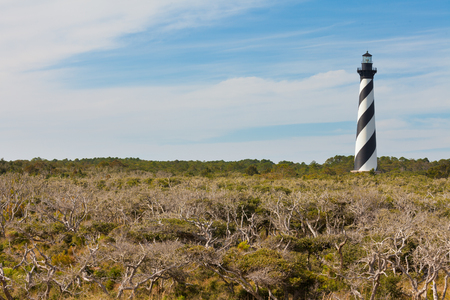 obx: Cape Hatteras Lighthouse towers over coastal forest dunes of Outer Banks island near Buxton, North Carolina, US Stock Photo
