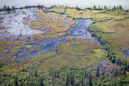 boreal: Aerial view of lake shore riparian wetland or marshland in boreal forest taiga of Yukon Territory, Canada Stock Photo