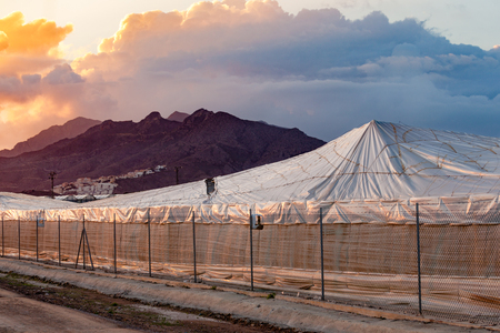 hothouse: Dramatic sunset sky over large scale commercial foil hothouse in Spain Stock Photo