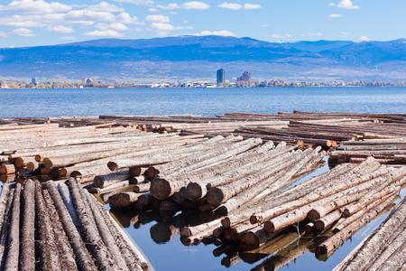Timber floats on Okanagan Lake with city of Kelowna across, British Columbia, Canada
