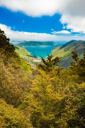 marlborough: View of beautiful coastal landscape of New Zealand Marlborough Sounds, Anakoha Bay and Cook Strait