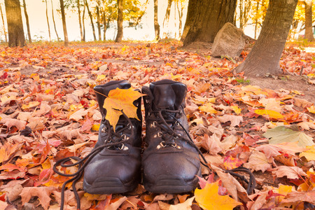 hiking boots: Leather hiking boots in yellow orange fall colored autumn forest ready to go on a hike Stock Photo