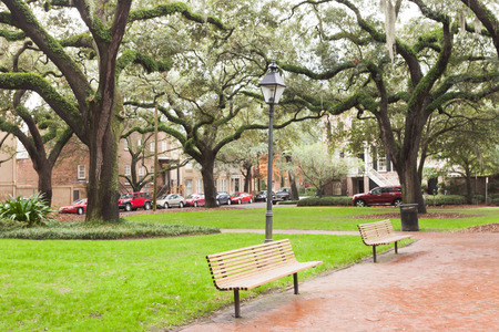 downtown district: Green lawn and benches under oak trees on Chatham Square in Historic District of downtown city of Savannah, Georgia, GA, USA