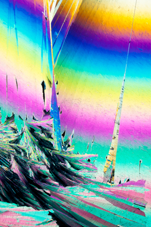 benzoic: Colorful appearance of crystals of benzoic acid, a food preserving additive, in polarized light