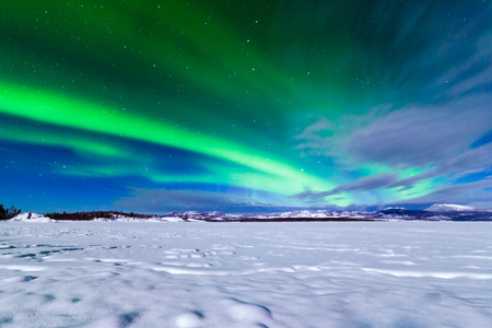 Spectacular display of intense Northern Lights or Aurora borealis or polar lights forming green swirls over frozen Lake Laberge, Yukon Territory, Canada winter landscape