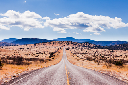 Straight road to horizon in high desert landscape of Davis Mountains, Texas, US