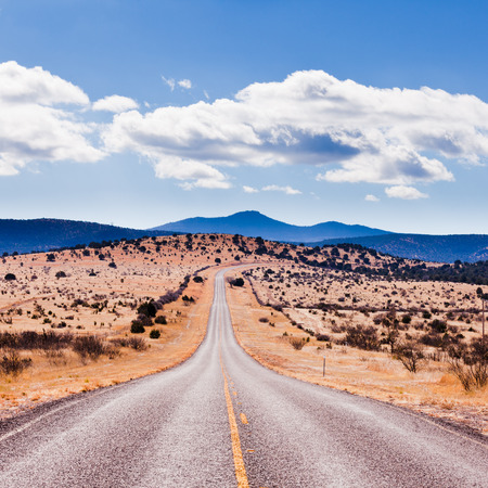 Straight road to horizon in high desert landscape of Davis Mountains, Texas, US Stock Photo - 79082684