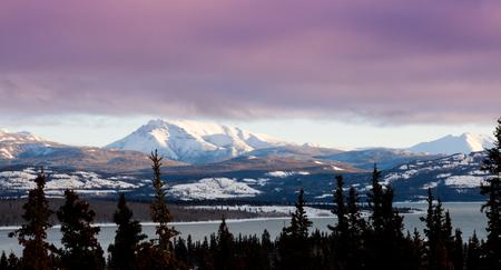 yukon territory: Pink winter clouds landscape in early winter over Lake Laberge, Yukon Territory, Canada Stock Photo