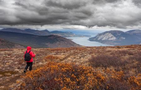 yukon territory: Hiker with backpack hiking Montana Mountain overlooking Tagish Lake, Yukon Territory, Canada, in autumn fall boreal alpine tundra on a rainy day Stock Photo