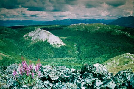 yukon territory: Endless uninhabited boreal forest taiga mountain wilderness landscape of southern Yukon Territory, Canada Stock Photo