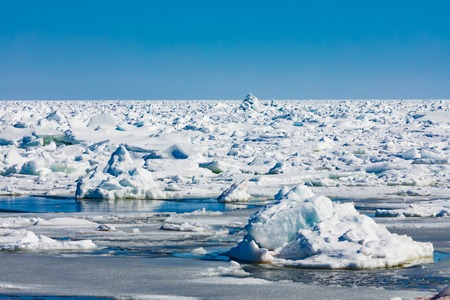 North Atlantic ocean pack-ice, a jumble of thick heavy ice floes stretching to a distant horizon 写真素材 - 118488028