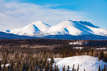 Winter mountain landscape of boreal forest taiga wilderness of Yukon Territory, Canada, north of Whitehorse