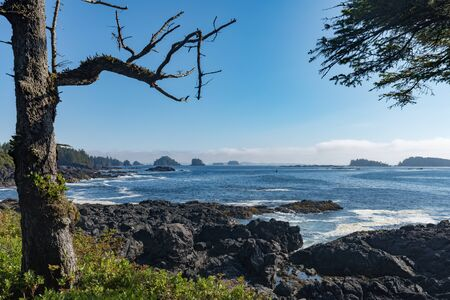 Rocky western Pacific Coast seen from Wild Pacific Trail of Alberni-Clayoquot County near Ucluelet, Vancouver Island, British Columbia, BC, Canada