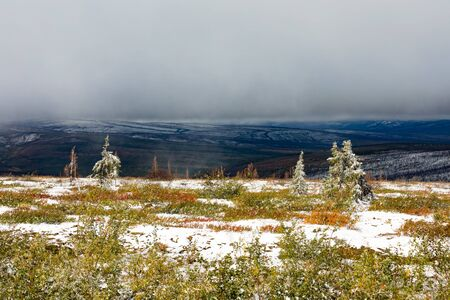 Late August snow in subarctic alpine tundra natural landscape of Ogilvie Mountains, Yukon Territory, YT, Canada