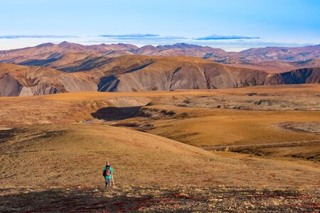 Solo hiker in autumn fall colors of alpine arctic tundra of Richardson Mountains, Northwest Territories, NWT, Canada