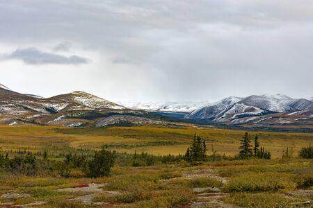 Autumn fall in arctic tundra around Richardson Mountains at arctic circle, Yukon Territory, YT, Canada 写真素材 - 132019625