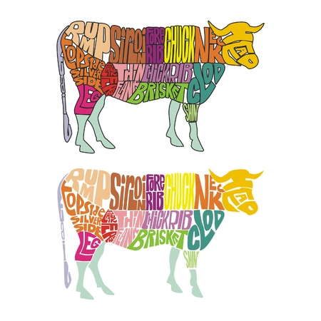 flank: vector illustration of isolated funny cow made from colored words describing parts