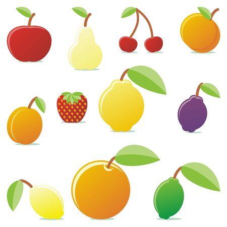 vector illustration of different summer fruits Illustration