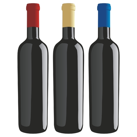 vector illustration of classic shape wine bottles Vector