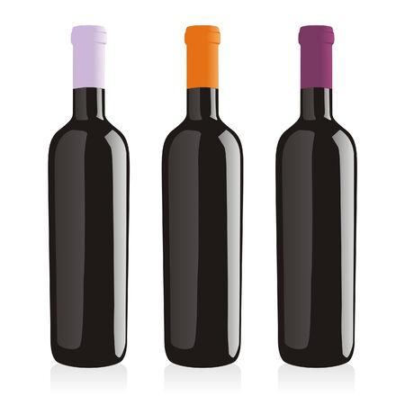 cabernet:  isolated wine bottles set