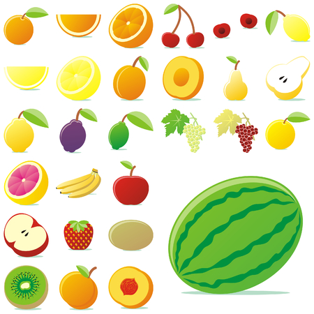 fully editable vector vector fruits with details Stock Vector - 5389279