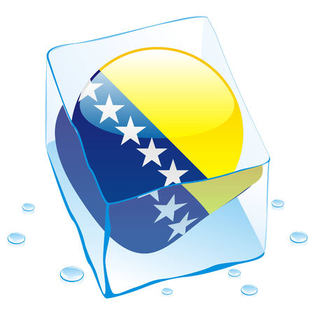 button flag of bosnia and herzegovina frozen in  ice cube Vector